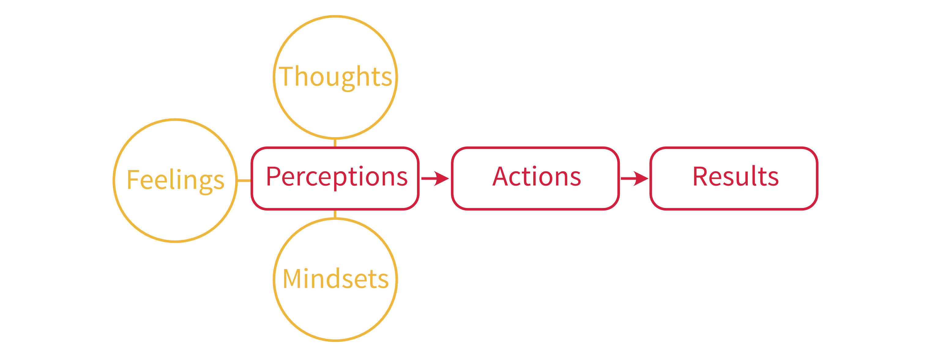 perceptions-actions-results